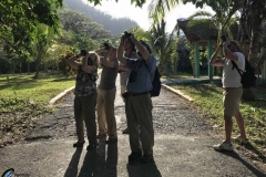 Birding in Cuba - April 2